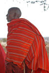 Maasai Warrior, copyright Karen Smith, 2007